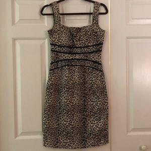 XOXO cheetah print dress Size 3/4